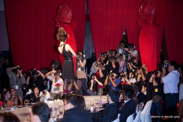 Stylo Fashion Ball 33